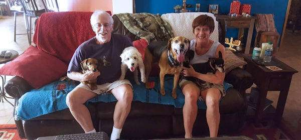 what to do with elderly parents pets